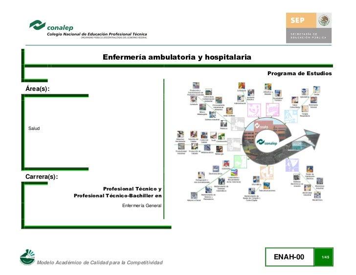 Enfermería ambulatoria y hospitalaria                                                                       Programa de Es...