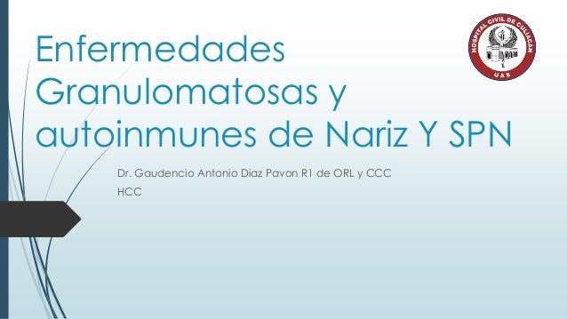 Enfermedades Granulomatosas y autoinmunes de Nariz Y SPN Dr. Gaudencio Antonio Diaz Pavon R1 de ORL y CCC HCC