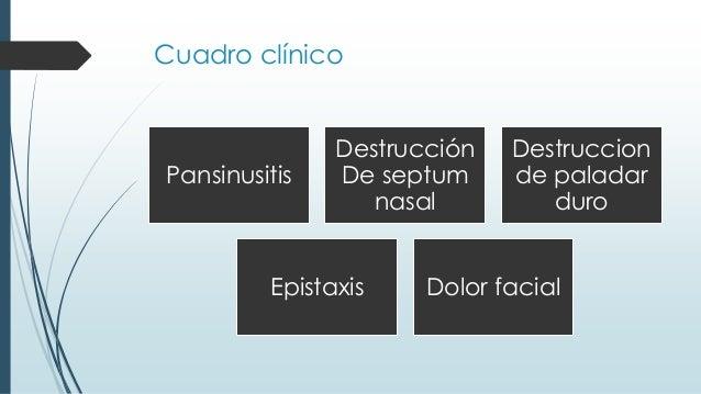 Cuadro clínico Pansinusitis Destrucción De septum nasal Destruccion de paladar duro Epistaxis Dolor facial