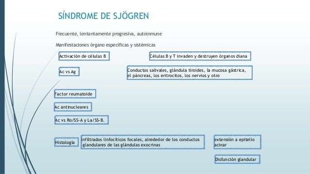 SÍNDROME DE SJÖGREN Frecuente, lentantamente progresiva, autoinmune Manifestaciones órgano específicas y sistémicas Activa...