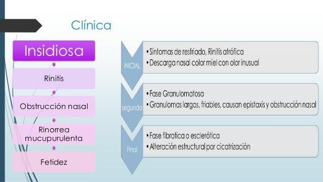 Clínica Insidiosa Rinitis Obstrucción nasal Rinorrea mucupurulenta Fetidez
