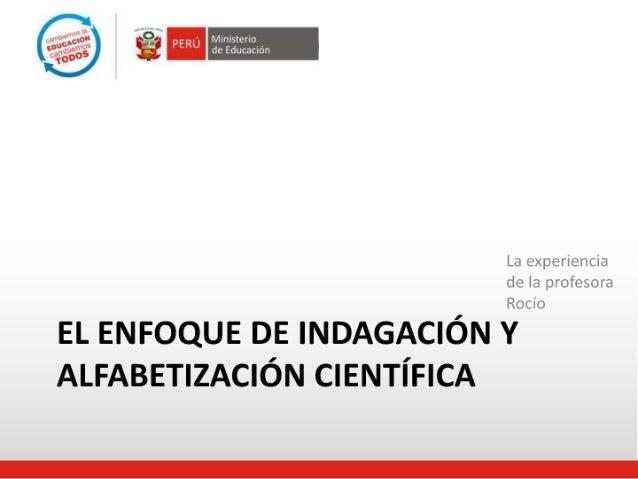 ENFOQUE DE ALFABETIZACIÓN CIENTÍFICA ÁREA DE CIENCIA Y AMBIENTE Slide 2