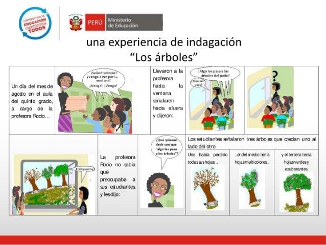 ENFOQUE DE ALFABETIZACIÓN CIENTÍFICA ÁREA DE CIENCIA Y AMBIENTE Slide 3