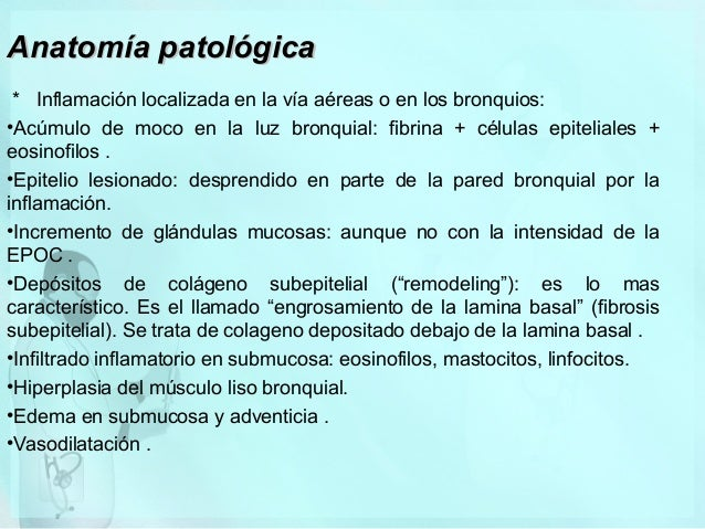 Anatomía patológica * Inflamación localizada en la vía aéreas o en los bronquios: •Acúmulo de moco en la luz bronquial: fi...