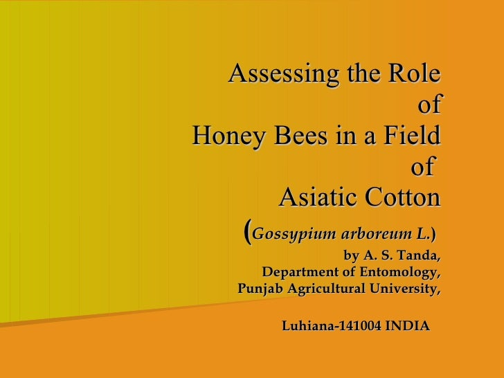 Assessing the Role  of  Honey Bees in a Field  of  Asiatic Cotton   ( Gossypium arboreum L. )  by A. S. Tanda,  Department...