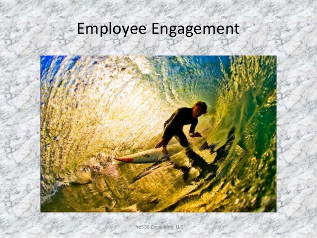 Employee Engagement Pro356 Consulting, LLC