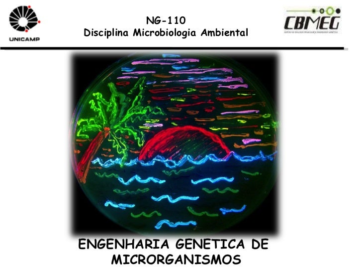 NG-110 Disciplina Microbiologia Ambiental ENGENHARIA GENETICA DE MICRORGANISMOS