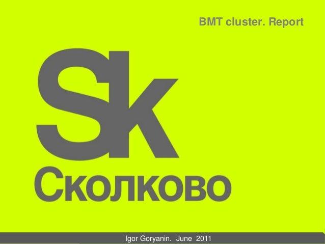 BMT cluster. Report Igor Goryanin. June 2011