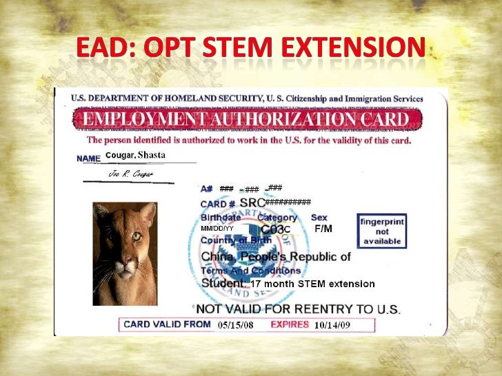 Gc Ead Card Validity