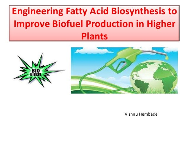 Engineering Fatty Acid Biosynthesis to Improve Biofuel Production in Higher Plants Vishnu Hembade