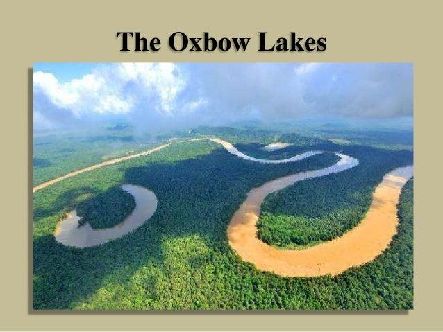 The Oxbow Lakes