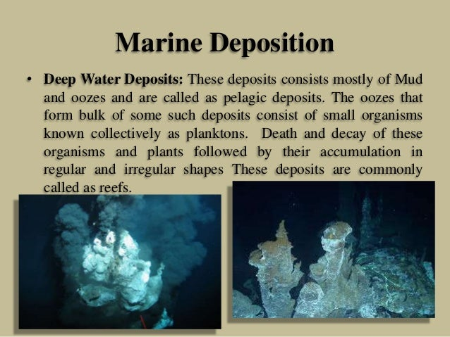 Marine Deposition • Deep Water Deposits: These deposits consists mostly of Mud and oozes and are called as pelagic deposit...