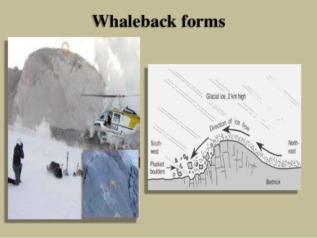 Whaleback forms
