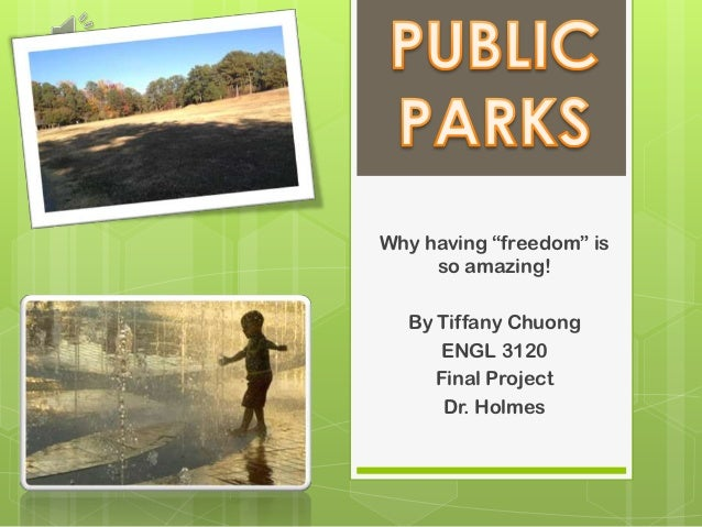 """Why having """"freedom"""" is     so amazing!  By Tiffany Chuong      ENGL 3120     Final Project      Dr. Holmes"""