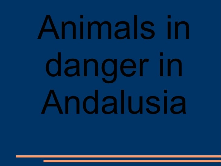 Animals in danger in Andalusia