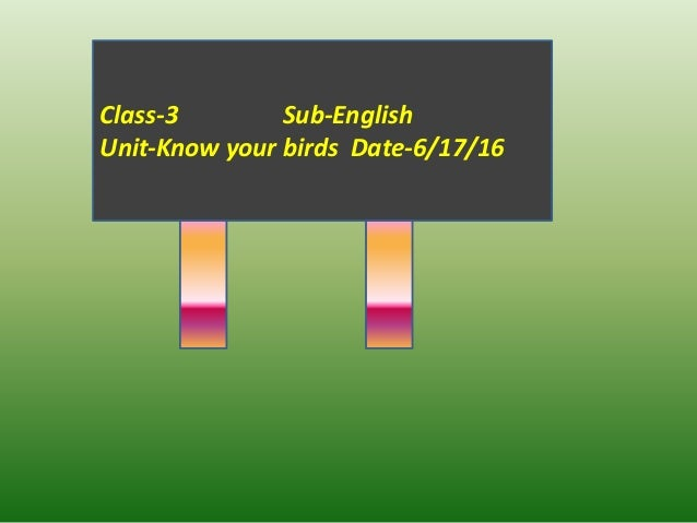 Class-3 Sub-English Unit-Know your birds Date-6/17/16
