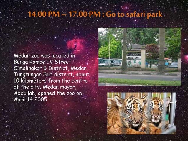 14.00 PM – 17.00 PM : Go to safari park  Medan zoo was located in  Bunga Rampe IV Street,  Simalingkar B District, Medan  ...