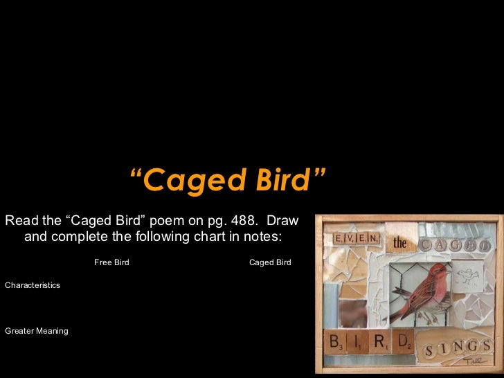 """"""" Caged Bird"""" <ul><li>Read the """"Caged Bird"""" poem on pg. 488.  Draw and complete the following chart in notes: </li></ul><u..."""