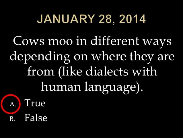 Cows moo in different ways depending on where they are from (like dialects with human language). A. B.  True False