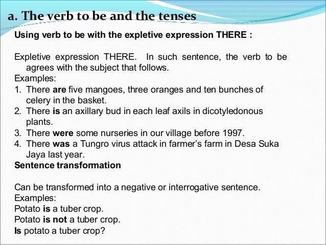 English For University Student