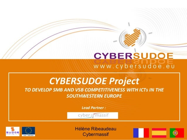 CYBERSUDOE ProjectTO DEVELOP SMB AND VSB COMPETITIVENESS WITH ICTs IN THE                SOUTHWESTERN EUROPE              ...