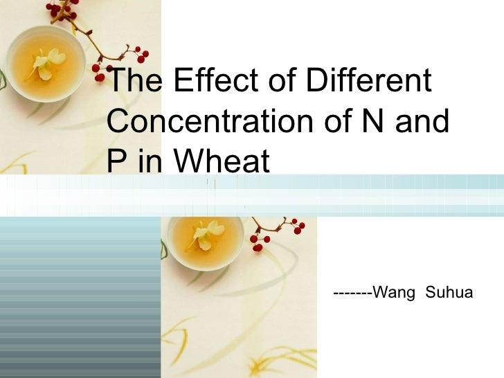 -------Wang  Suhua The Effect of Different Concentration of N and P in Wheat
