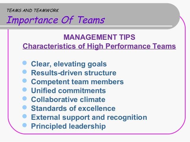 importance of teamwork in an organization pdf