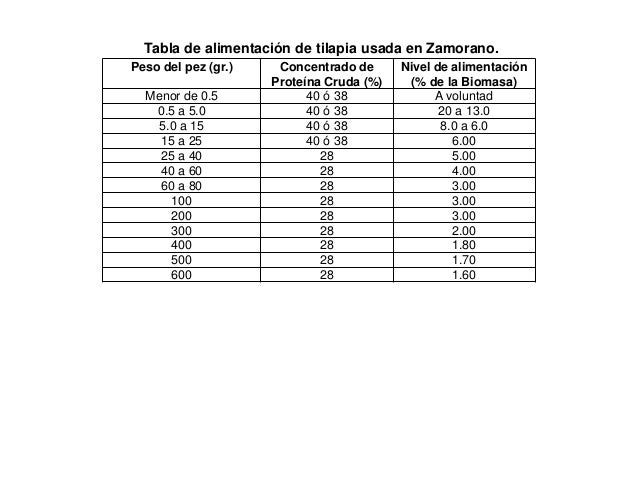 Engorda de tilapia for Tabla de alimentacion para tilapia roja