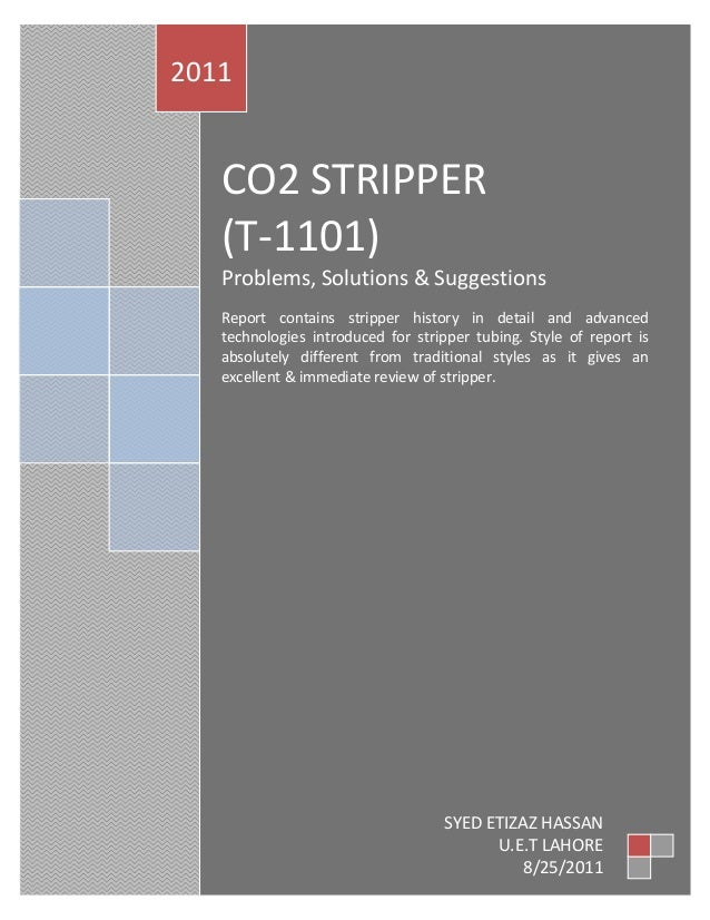 2011   CO2 STRIPPER   (T-1101)   Problems, Solutions & Suggestions   Report contains stripper history in detail and advanc...