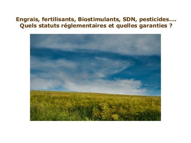 Engrais, fertilisants, Biostimulants, SDN, pesticides…. Quels statuts réglementaires et quelles garanties ?