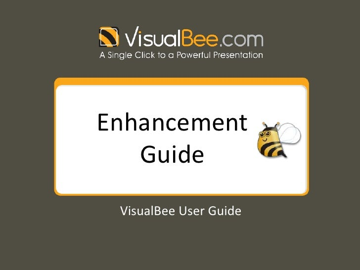 Enhancement Guide<br />VisualBee User Guide<br />