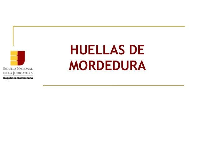 HUELLAS DE MORDEDURA
