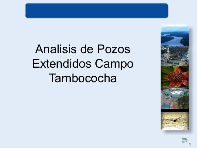 Analisis de Pozos Extendidos Campo Tambococha 1