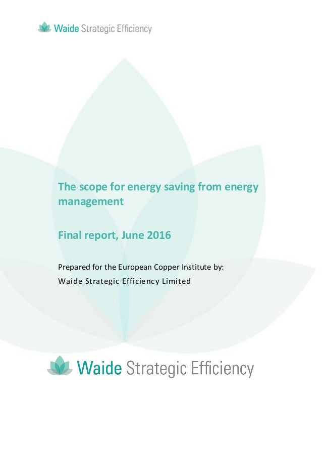 The scope for energy saving from energy management Final report, June 2016 Prepared for the European Copper Institute by: ...