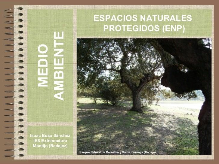 MEDIO AMBIENTE Isaac Buzo Sánchez IES Extremadura Montijo (Badajoz) ESPACIOS NATURALES  PROTEGIDOS (ENP) Parque Natural de...