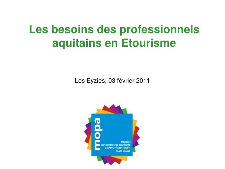 Les besoins des professionnels aquitains en Etourisme<br />Les Eyzies, 03 février 2011<br />