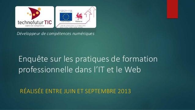 Développeur de compétences numériques  Enquête sur les pratiques de formation professionnelle dans l'IT et le Web RÉALISÉE...