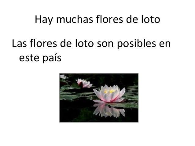 Hay muchas flores de lotoLas flores de loto son posibles en este país