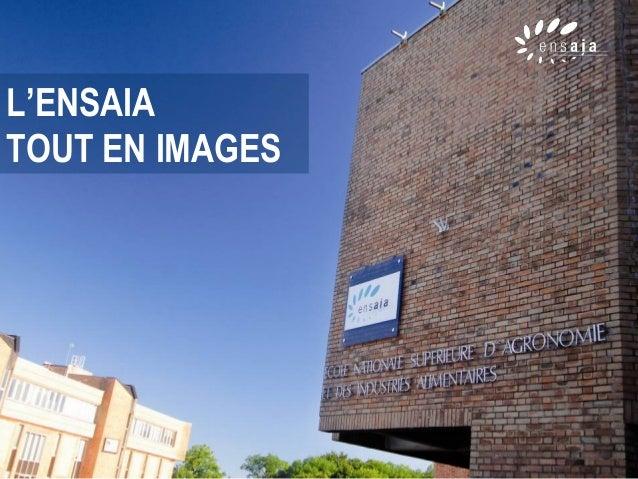 L'ENSAIA TOUT EN IMAGES