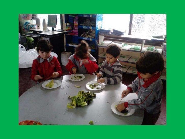 Ensalada de verduras Slide 3