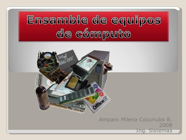 Amparo Milena Cocunubo B. 2008 Ing. Sistemas