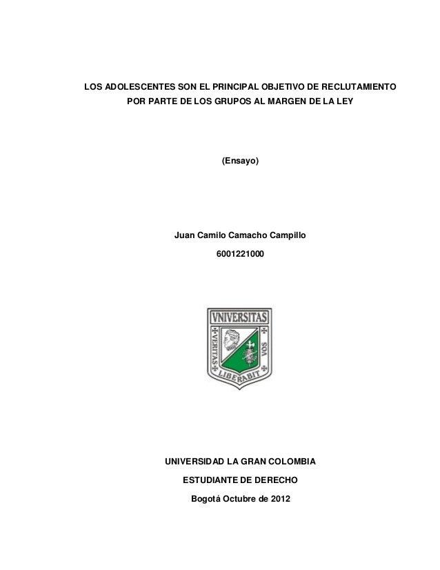 LOS ADOLESCENTES SON EL PRINCIPAL OBJETIVO DE RECLUTAMIENTO        POR PARTE DE LOS GRUPOS AL MARGEN DE LA LEY            ...