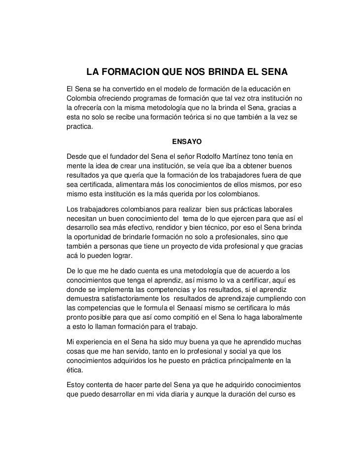 ENSAYO TICA PROFESIONAL