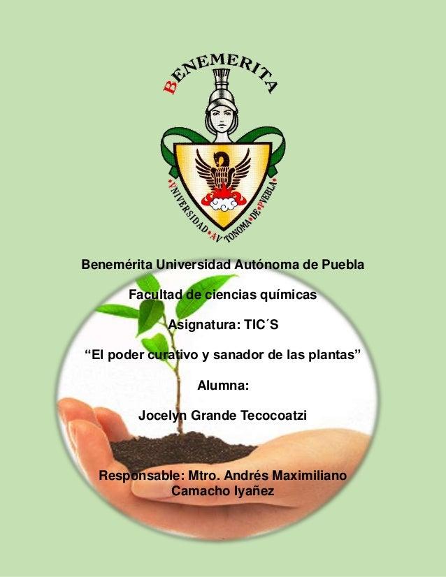 """Benemérita Universidad Autónoma de Puebla Facultad de ciencias químicas Asignatura: TIC´S """"El poder curativo y sanador de ..."""