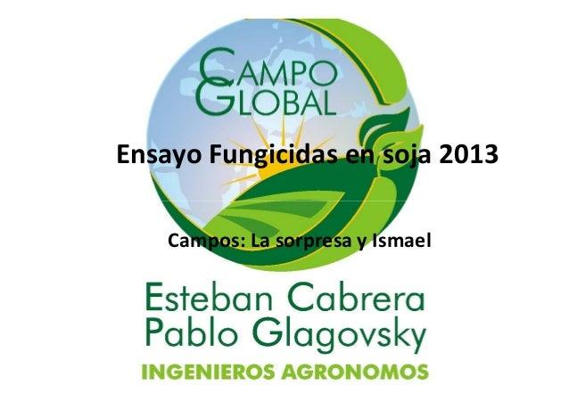 Ensayo Fungicidas en soja 2013 Campos: La sorpresa y Ismael