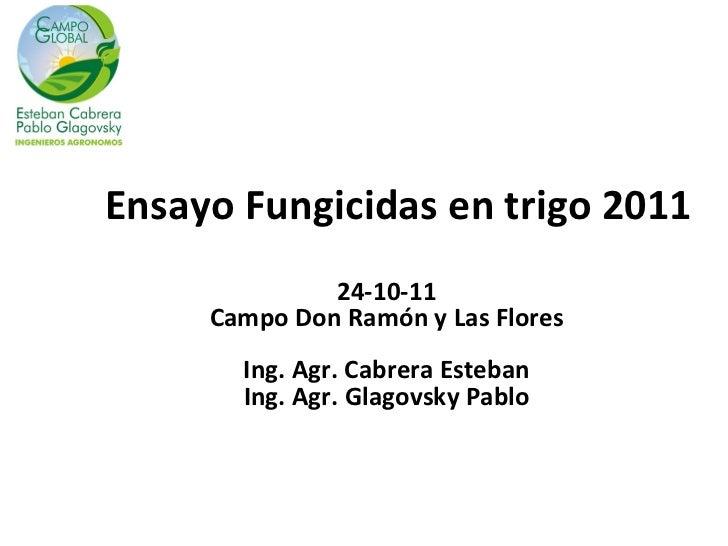 Ensayo Fungicidas en trigo 2011              24-10-11     Campo Don Ramón y Las Flores       Ing. Agr. Cabrera Esteban    ...