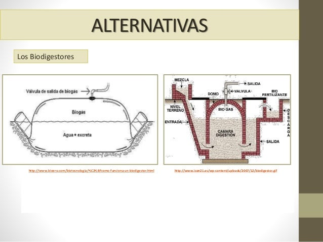 ALTERNATIVAS Fuent e: http://www.bioero.com/biotecnologia/%C2%BFcomo-funciona-un-biodigestor.html Fuente: http://www.ison2...