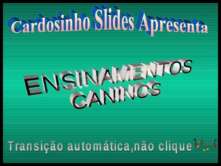 Cardosinho Slides Apresenta ENSINAMENTOS CANINOS Transição automática,não clique