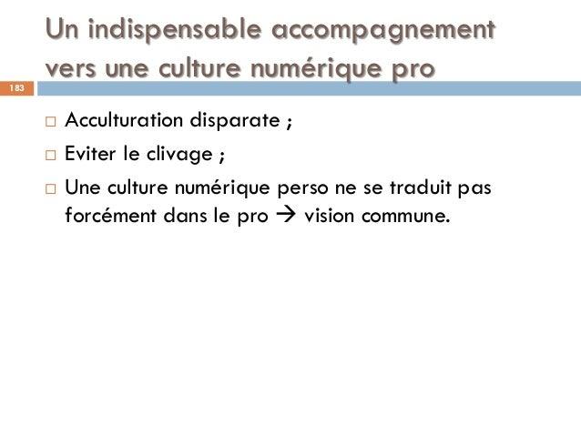 Un indispensable accompagnement vers une culture numérique pro183  Acculturation disparate ;  Eviter le clivage ;  Une ...