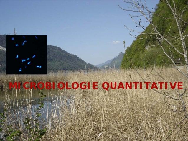 MICROBIOLOGIE QUANTITATIVE